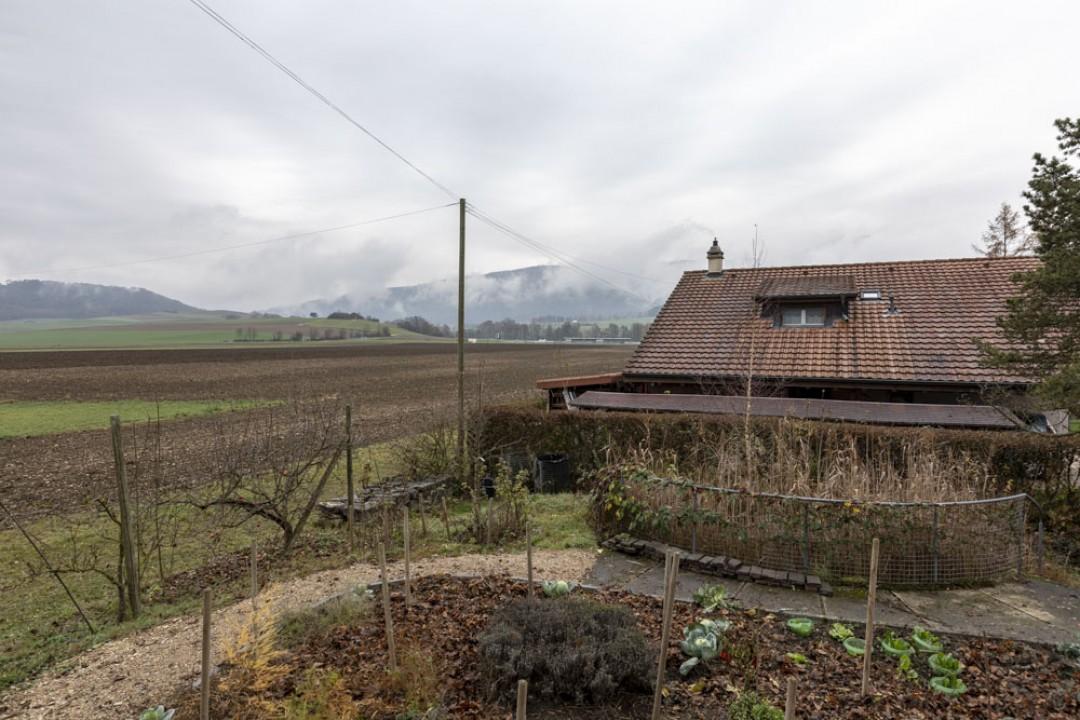 Charmante maison familiale en bordure de zone agricole - 12