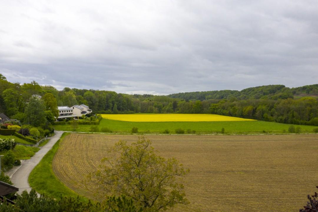 Charmante Doppelhaushälfte mit schönem Garten - 13