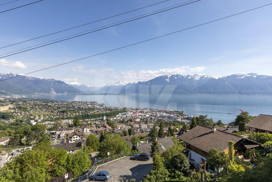 Spektakulärer Blick auf den Genfersee und die Alpen! - 8