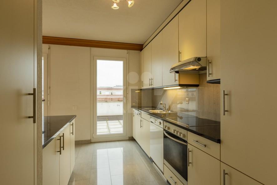 Grand attique avec phénoménale terrasse - 6