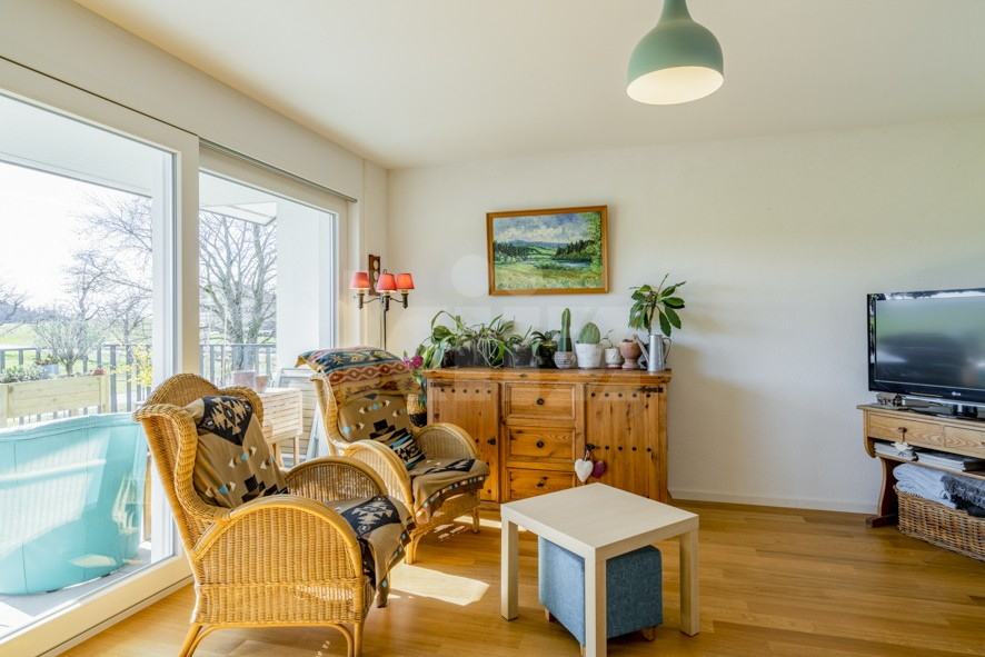 Magnifique appartement avec très belle terrasse - 7
