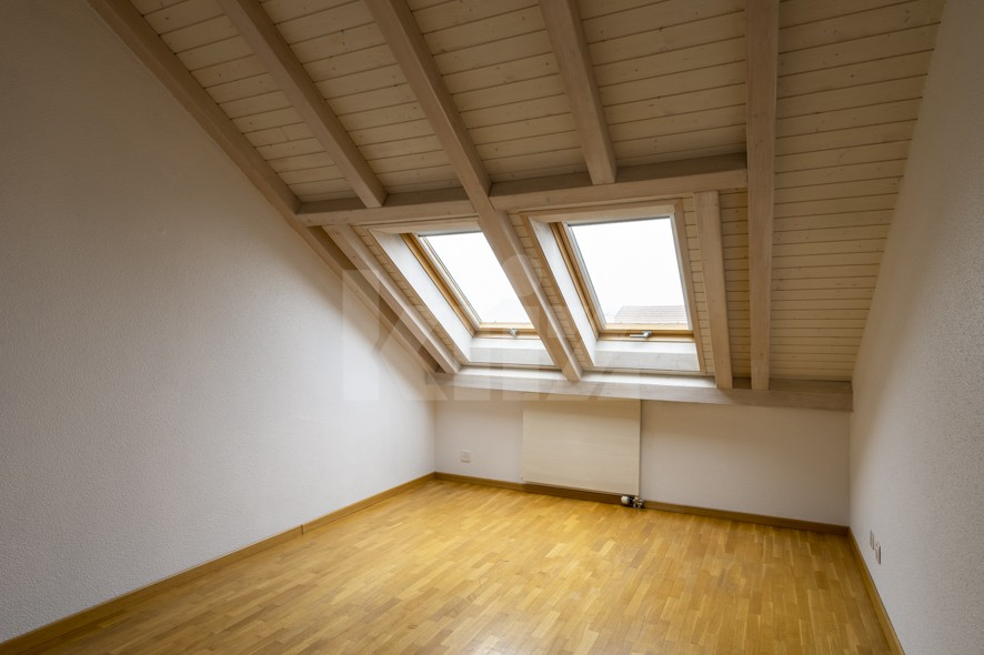 Très beau duplex spacieux et lumineux - 9