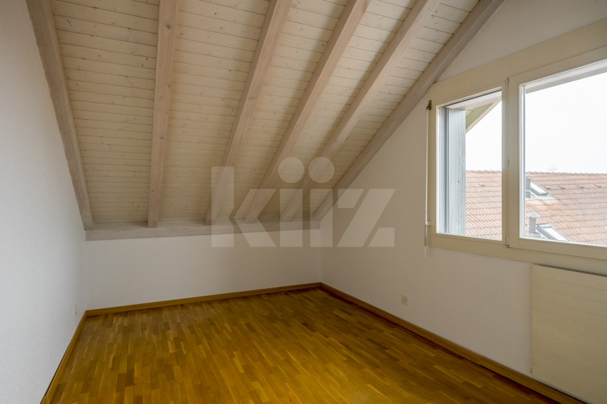 Très beau duplex spacieux et lumineux - 10