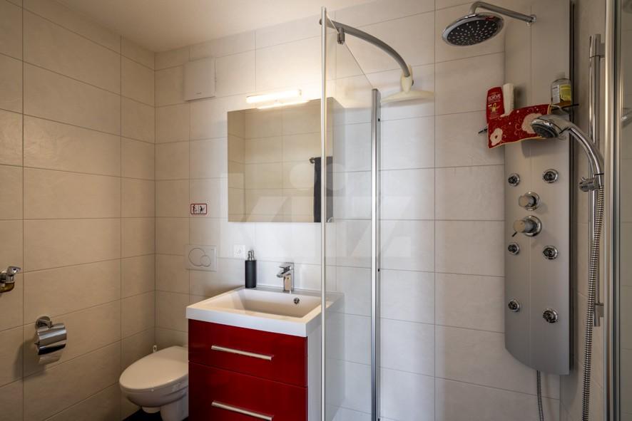 Magnifique appartement avec deux belles terrasses - 7